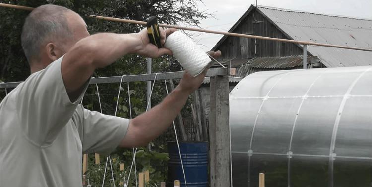 Шпалера під огірки: практично, швидко і зручно