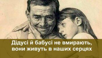 Бабусі і дідусі - історія про любов