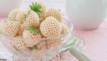Пайнберрі- полуниця зі смаком ананаса