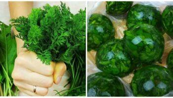 5 кращих методів зберігання зелені весь рік