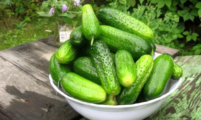 Болгарські огірочки: ділюся рецептом, як зробити так, щоб вони приємно хрустіли