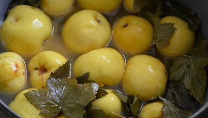 Рецепт мочених яблук на листках смородини за бабусиним рецептом
