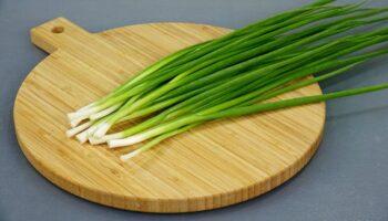Заготовляємо зелену цибулю: без сушіння та заморозки. Взимку нібито свіжа