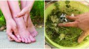 Рецепт приготування настою для виведення з організму зайвої рідини та зняття набряків