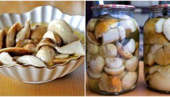 Як приготувати дуже смачні мариновані білі гриби