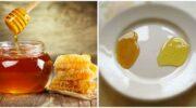 Як можна швидко розпізнати, перед вами натуральний мед чи цукровий фальсифікат