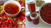 Як приготувати настоянку, чай або варення з шипшини, щоб зміцнити імунітет