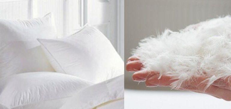 Ось чому пір'яні подушки необхідно залишати на морозі
