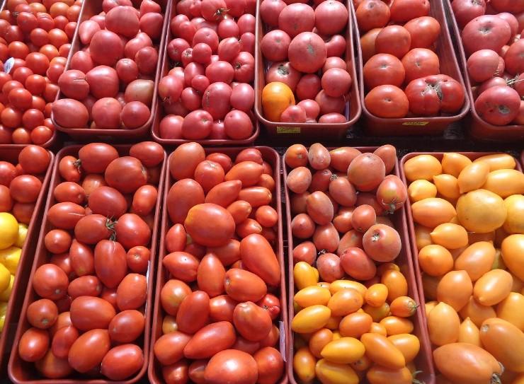 Пікірування помідорів. Які помилки ми робимо?
