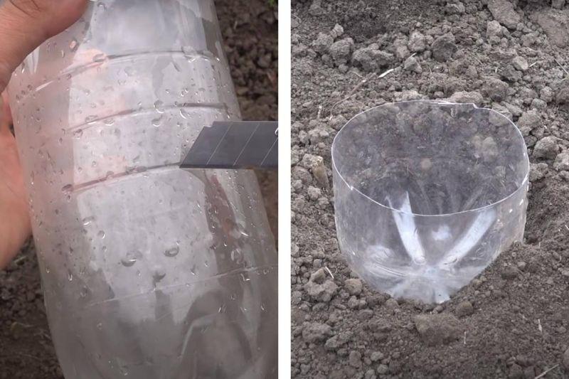 Як влаштувати крапельний полив з пластикової пляшки