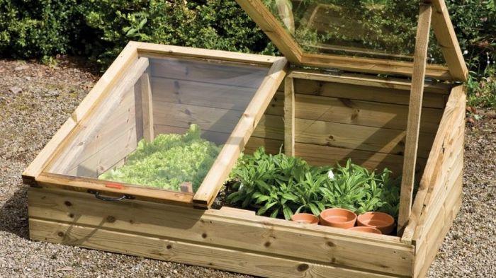 Корисні поради для дачі та городу від досвідченого садівника