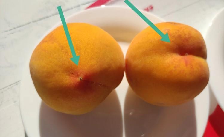 Чому серед персиків я завжди вибираю тільки «хлопчиків»