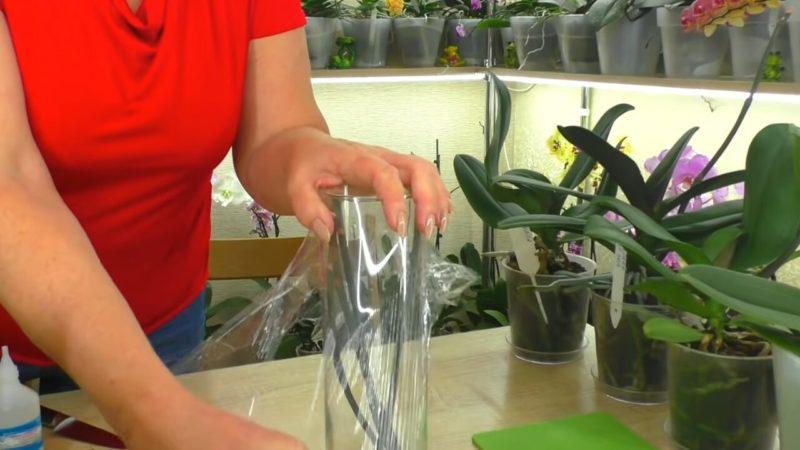 Спробуйте виростити нову орхідею-дитинку з зрізаного квітконосу